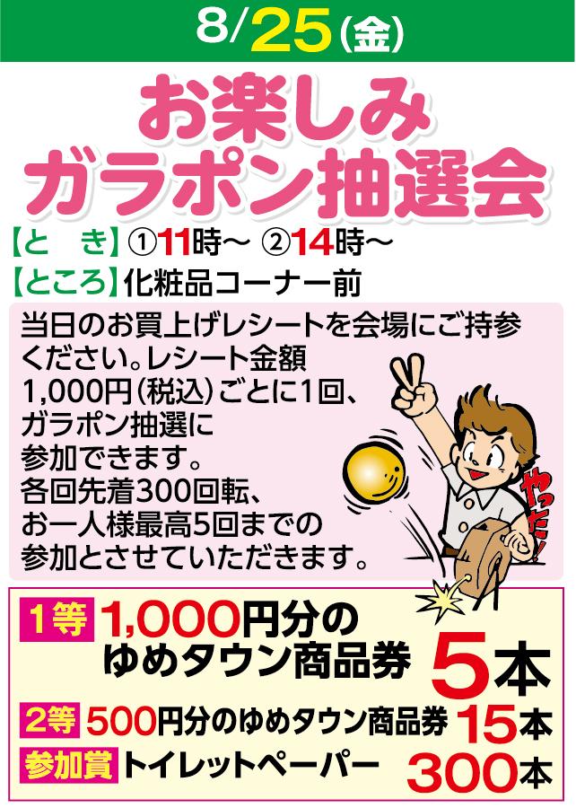 8/25お楽しみガラポン抽選会